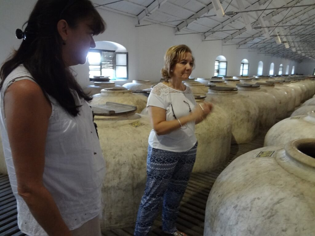 Teresa explains the tinajas at Perez Barquero to Laura during our visit last year.