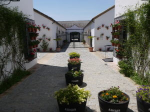 The patio at Bodegas Alvear