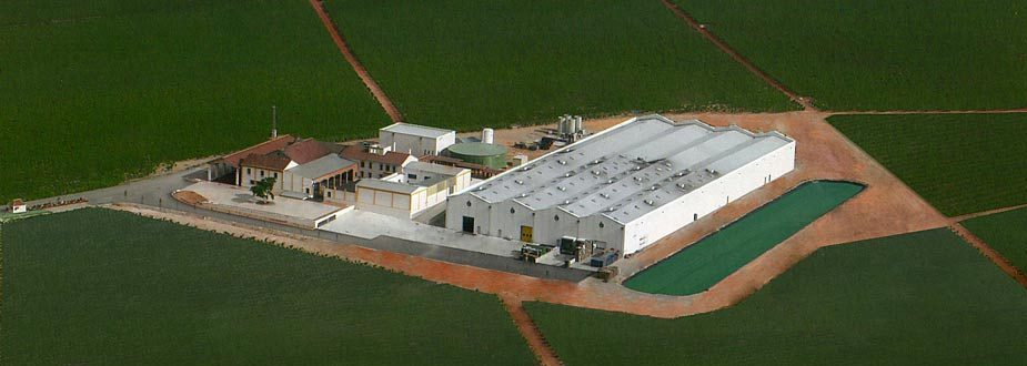 An aerial view - Photo courtesy of Bodegas Malaga Virgen